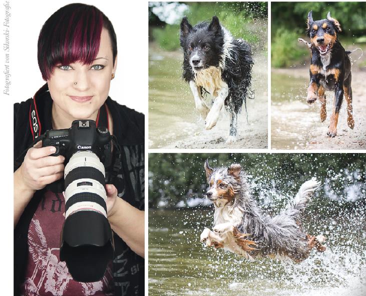 Sikorski-Fotografie - Haustierfotografie aus Falkensee